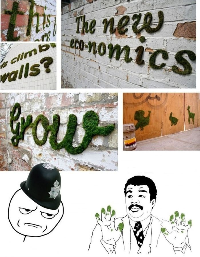 How to Make Moss Graffiti.